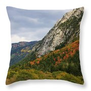 Big Cottonwood Canyon 2 Throw Pillow