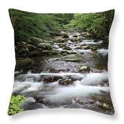 Big Creek Throw Pillow