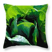 Big Green Cabbage Throw Pillow