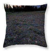 Big-headed Clover Sunset Throw Pillow