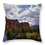 Big Horn National Forest Throw Pillow