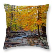 Big Hunting Creek Down Stream From Cunningham Falls Throw Pillow