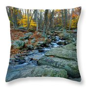 Big Hunting Creek Upstream From Cunningham Falls Throw Pillow