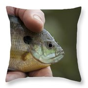 Big Man Hand - Little Crappie Throw Pillow