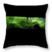 Big Mouth Cave, Tennessee Throw Pillow