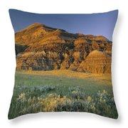 Big Muddy Badlands, Saskatchewan, Canada Throw Pillow