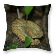 Big Old Mushroom Throw Pillow