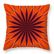 Big Orange Throw Pillow