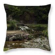 Big Spring Park Throw Pillow