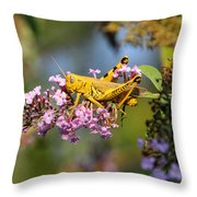Big Yellow Grasshopper Throw Pillow
