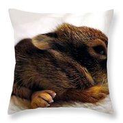 Bigfoot Throw Pillow