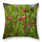 Bilberry Flowers Throw Pillow