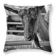 Billy The Ham Monochrome Throw Pillow