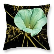 Bindweed And Seed Heads Throw Pillow