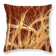 Bioengineered Barley Throw Pillow