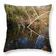 Birch Eye Throw Pillow