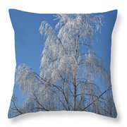 Birch In Frost. Throw Pillow