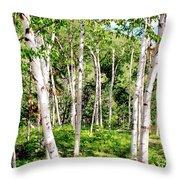Birch Path Throw Pillow