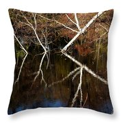 Birch Reflections Throw Pillow
