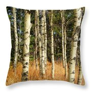 Birch Tree Abstract Throw Pillow