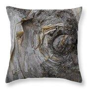 Birch Tree Bark No.0859 Throw Pillow
