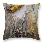 Birch Tree Bark No.0889 Throw Pillow