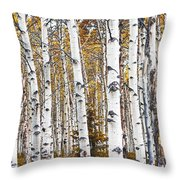 Birch Trees No.0644 Throw Pillow