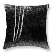 Birches In Black And White Throw Pillow