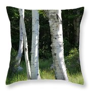 Birches On A Meadow Throw Pillow