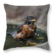 Bird Bath Fun Time Throw Pillow