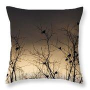 Bird Cove Throw Pillow