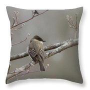 Bird - Eastern Phoebe - Very Contented Throw Pillow