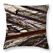Bird Feather Throw Pillow
