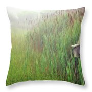 Bird House In Quogue Wildlife Preserve Throw Pillow