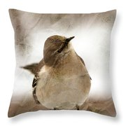 Bird In A Bag Throw Pillow by Skip Willits