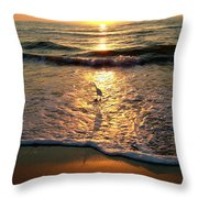 Bird In The Spotlight On The Gulf Throw Pillow