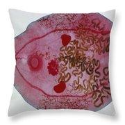 Bird Liver Fluke Lm Throw Pillow