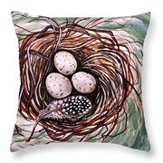 Bird Nest And A Feather Throw Pillow