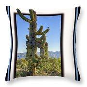 Bird On Cactus Throw Pillow
