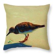 Bird On Daytona Beach Throw Pillow