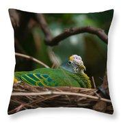 Bird On Nest Throw Pillow