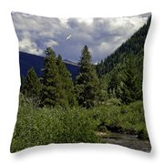 Bird Over Vail 1 Throw Pillow