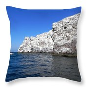 Bird Rock Throw Pillow