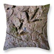 Bird Tracks Throw Pillow