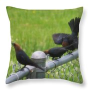 Bird Trio Throw Pillow