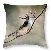 Bird - Tufted Titmouse - Wind Rider Throw Pillow