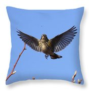 Bird Vs Bug Throw Pillow