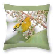 Bird With Berry Throw Pillow