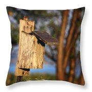 Birdhouse 23 Throw Pillow