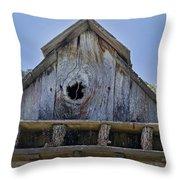 Birdhouse In Cambria Throw Pillow